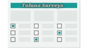 what is Toluna Surveys