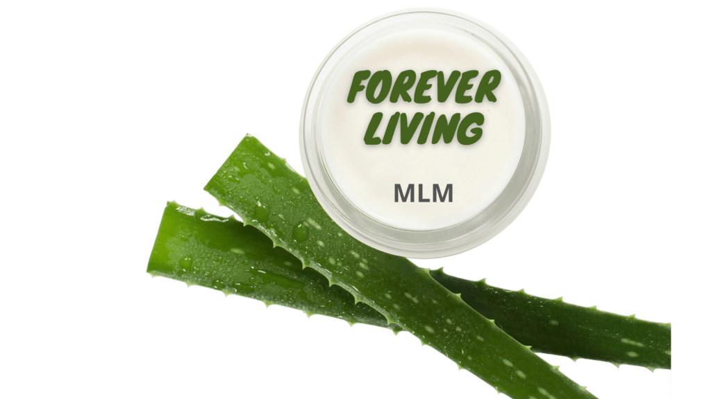 What is Forever Living MLM